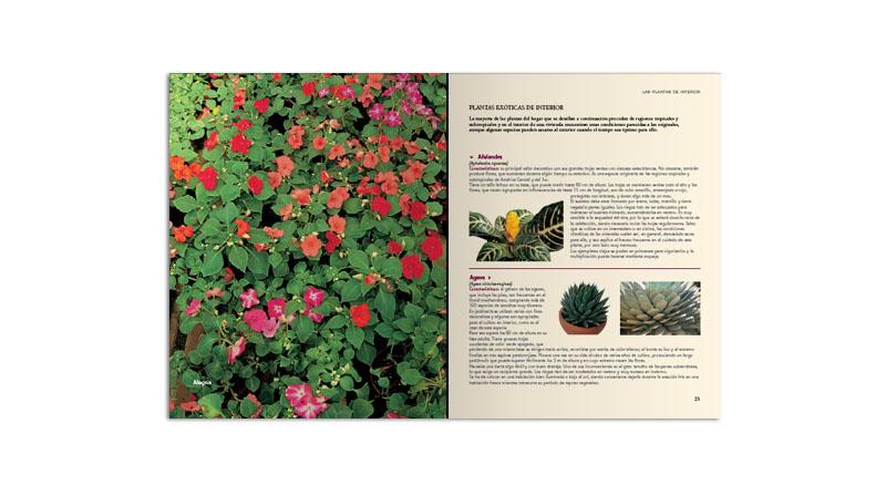 El gran libro de la jardiner a signo editores - Libros sobre jardineria ...