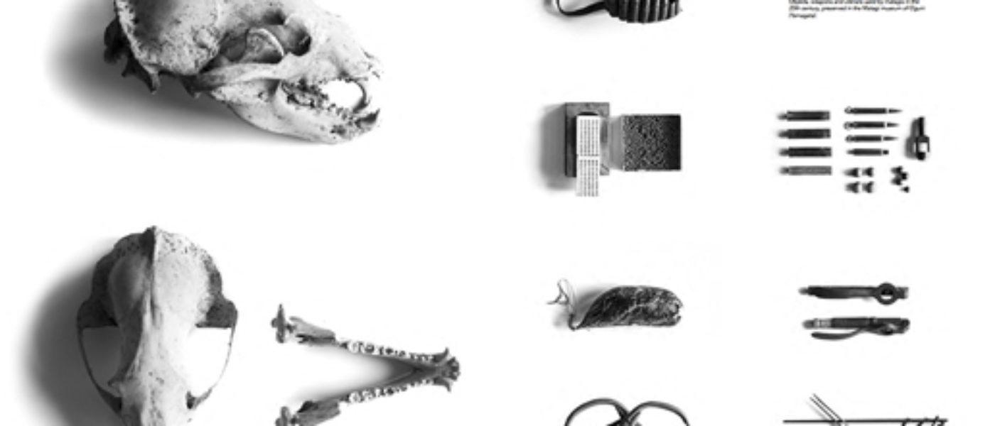 D.OAK magazine tercer proyecto seleccionado en el Programa Crisálida